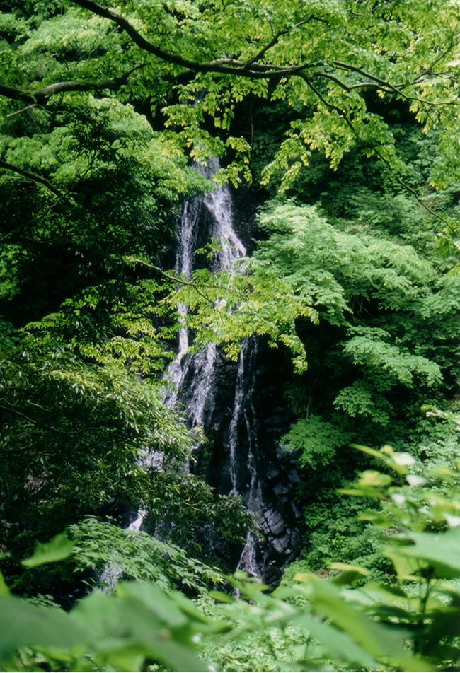Midono Waterfall 1