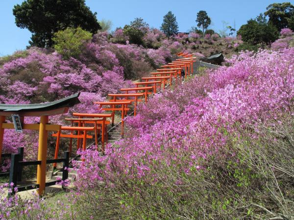 Shishizaki Inari Shrine 1