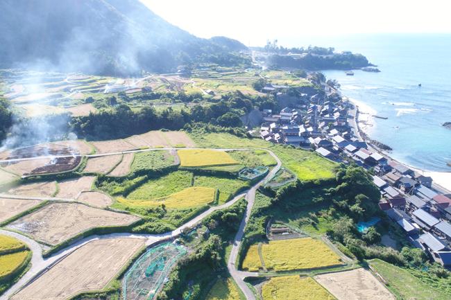 Sodeshi Rice Terraces 1