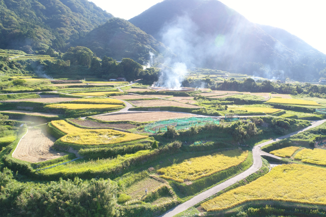 Sodeshi Rice Terraces 3