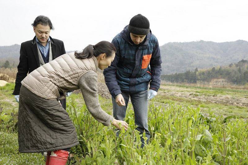 Organic Farm Tour & Cooking Class in Kyoto by the Sea 2