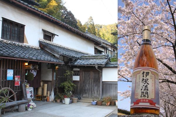 Mukai Shuzo sake brewery (Ine) 1