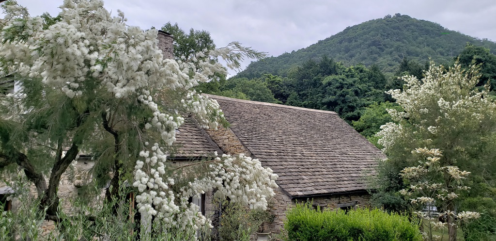 Holiday Home, cottages in nature 1