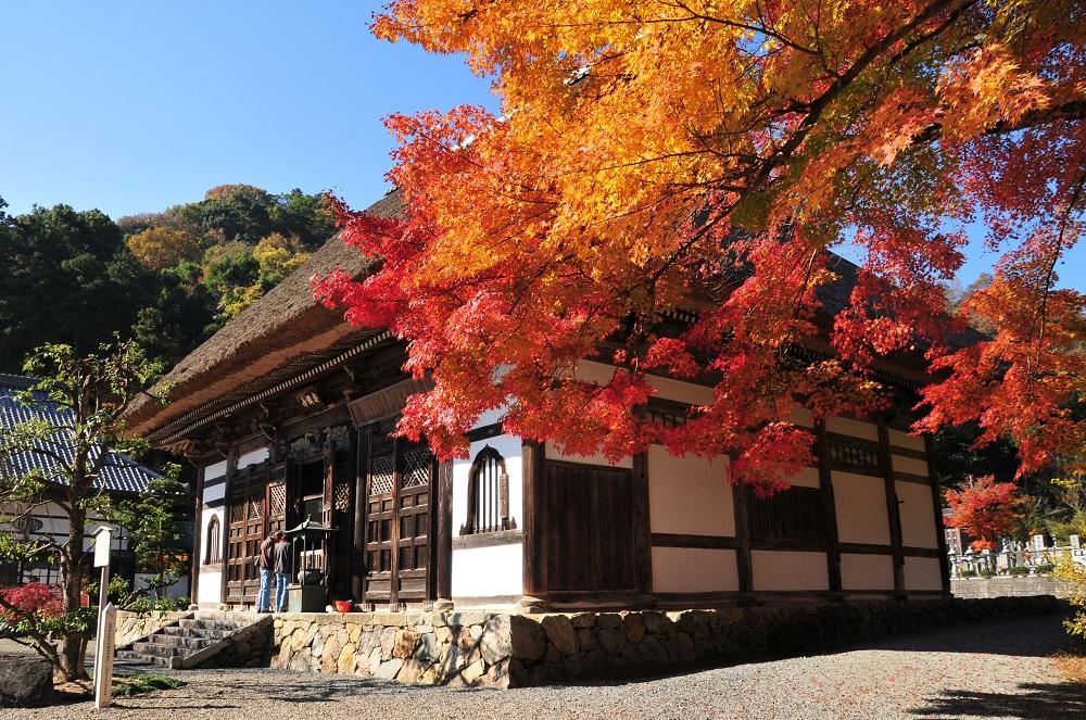 Ankokuji Temple 1