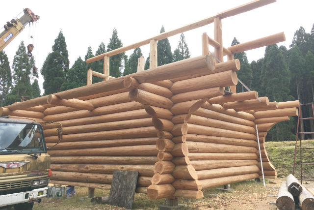 We make log house from the beginning