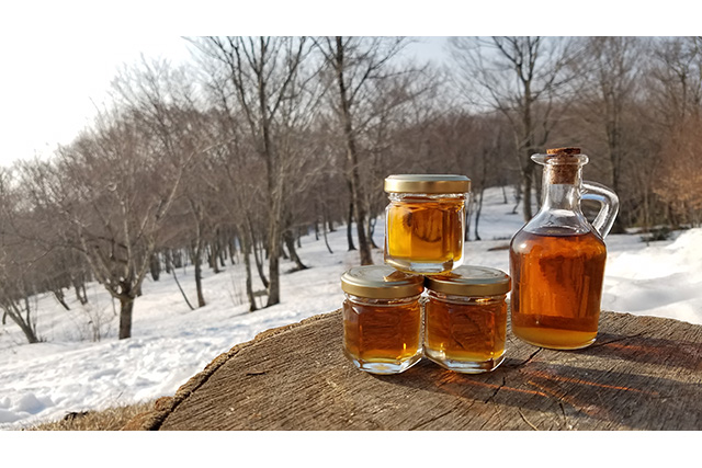 We make maple syrup in the world shop (with privilege including souvenir)
