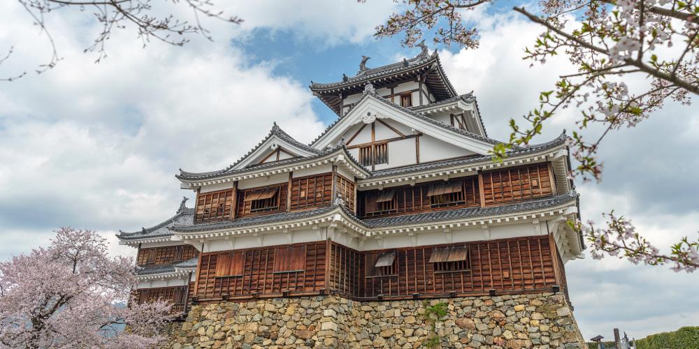 Seeing Maizuru City