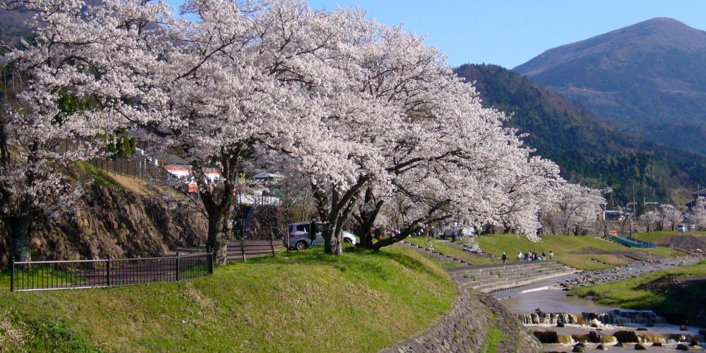 Seeing Yosano Town
