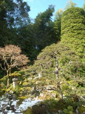 Shofukuji Temple (garden)